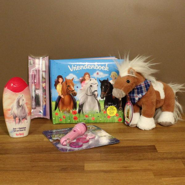 Kinderen cadeau Horses Dreams